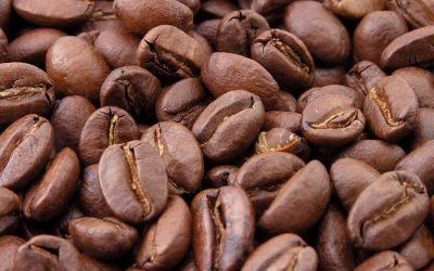 Geroosterde-koffiebonen-koffiemachine friesland